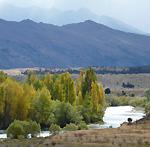 Wanaka Clutha River track