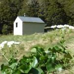 tramping huts in NZ