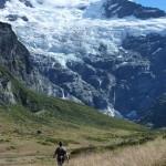 trekking in alpine wonderland